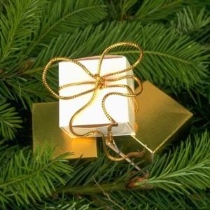 Découvrez les marchés de Noël en Cévennes